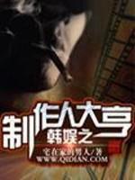 《韩娱之制作人大亨》作者:宅在家的男人