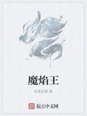 《魔焰王》作者:炎晨论曦