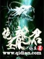 《绝圣龙君》作者:仙座