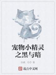 《宠物小精灵之黑与暗》作者:扶威.QD