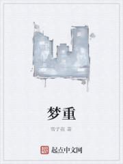 《梦重》作者:雪子夜