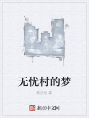 《无忧村的梦》作者:陈正松
