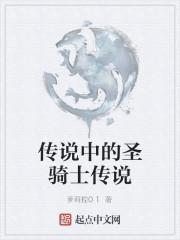 《传说中的圣骑士传说》作者:萝莉控01