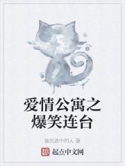 《爱情公寓之爆笑连台》作者:蒜苔炒肉