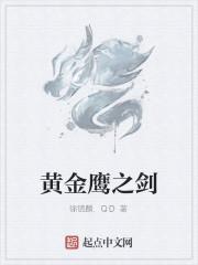 《黄金鹰之剑》作者:徐镜麟.QD