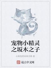 《宠物小精灵之坂木之子》作者:心有猛虎细嗅戈薇