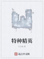 《特种精英》作者:王小仙