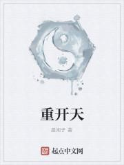 《重开天》作者:晨湘子