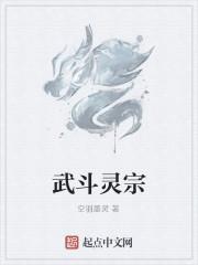 《武斗灵宗》作者:空羽墨灵