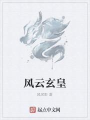 《风云玄皇》作者:风灵影