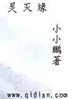 《灵灭缘》作者:小小鹏.QD