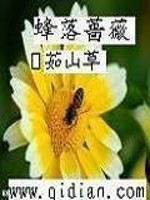 《蜂落蔷薇》作者:茹山草