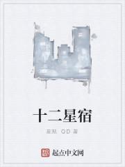 《十二星宿》作者:星溯.QD