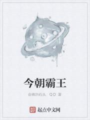 《今朝霸王》作者:会痛的石头.QD