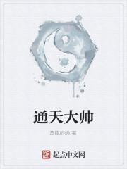 《通天大帅》作者:蓝瓶的奶