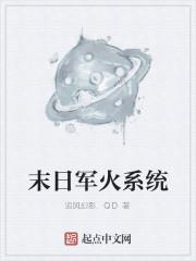 《末日军火系统》作者:追风幻影.QD