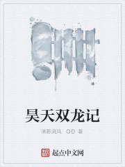 《昊天双龙记》作者:清影流鸿.QD