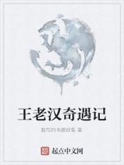 《王老汉奇遇记》作者:我写的书很好看