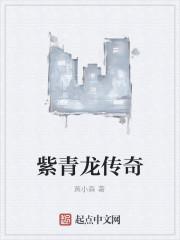《紫青龙传奇》作者:黄小森