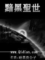 《暗黑圣世》作者:暗黑贵公子龙