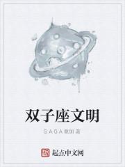 《双子座文明》作者:SAGA撒加