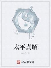 《太平真解》作者:王大仁