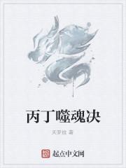 《丙丁噬魂决》作者:天梦纹