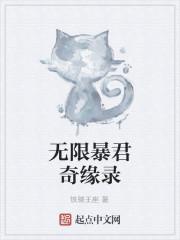 《无限暴君奇缘录》作者:铁骑王座