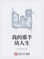 《我的那半块人生》作者:叶子青鲁皖