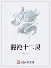 《混沌十二灵》作者:魂雪