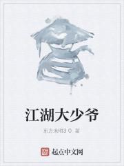 《江湖大少爷》作者:东方未明30