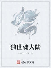 《独世魂大陆》作者:2少李鹏