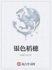 《银色稻穗》作者:断尾的狐