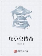 《庄小空传奇》作者:宝庆府
