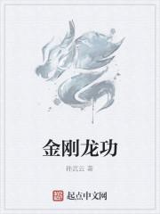《金刚龙功》作者:孙武云