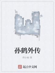 《孙鹤外传》作者:鹤小仙