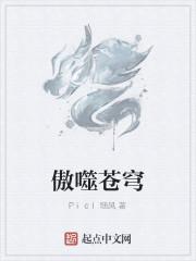 《傲噬苍穹》作者:Picl随风