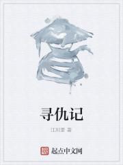 《寻仇记》作者:江川景