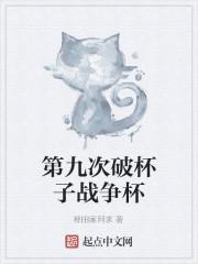 《第九次破杯子战争杯》作者:稗田家阿求