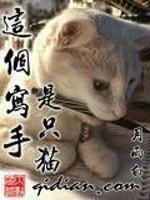 《这个写手是只猫》作者:月雨白