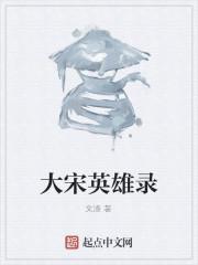 《大宋英雄录》作者:文涤