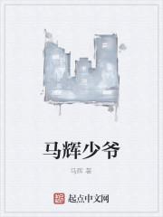 《马辉少爷》作者:马辉