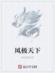 《风极天下》作者:杨月蓝夜