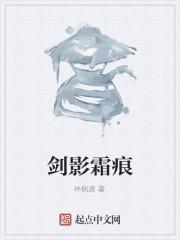 《剑影霜痕》作者:林枫潇