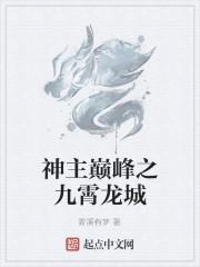 《神主巅峰之九霄龙城》作者:青溪有梦
