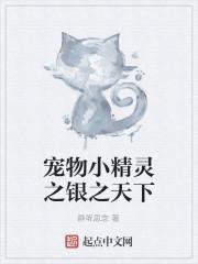 《宠物小精灵之银之天下》作者:静听思念