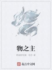 《物之主》作者:青椒炒豆腐.QD