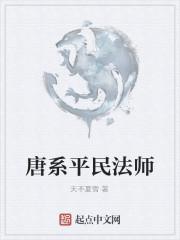 《唐系平民法师》作者:天不夏雪