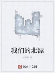 《我们的北漂》作者:枫落花