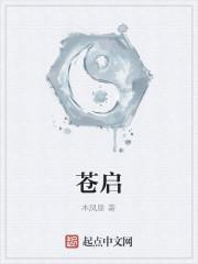 《苍启》作者:木风原